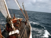 Voyaging across Indian Ocean