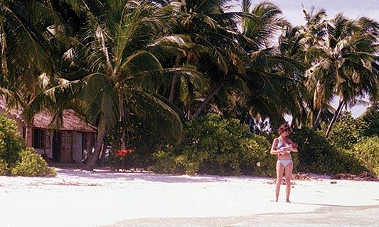 driftword-article-island
